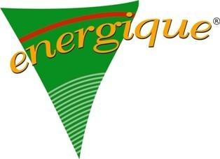 Morsink Dier & Hobby - Logo energique