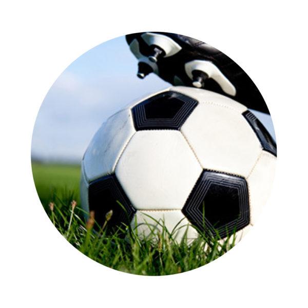 Morsink Dier & Hobby - Sporveldenmengsel