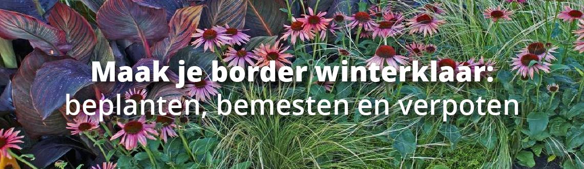 Morsink Dier & Hobby - frame header herfst morsink zonder 01